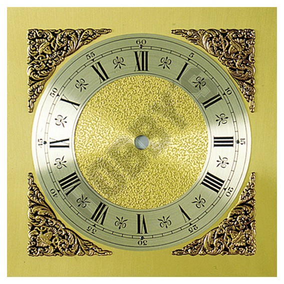 Silver Brass Dial