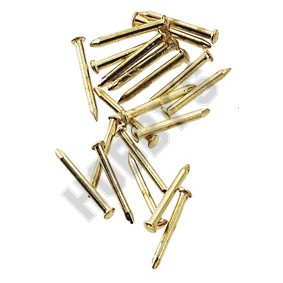 Brass Pointed Pin Nails