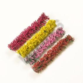 Hedging-Flowering