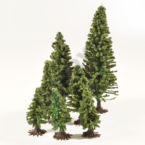 Fir Trees with Feet