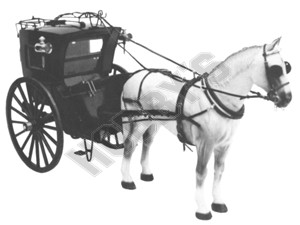 Handsom Cab Plan