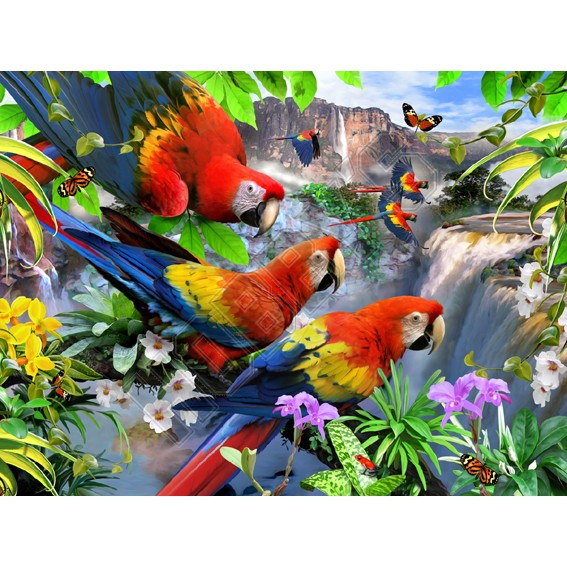 Flight Of The Macaw Puzzle