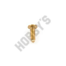 Brass Screws  9Mm