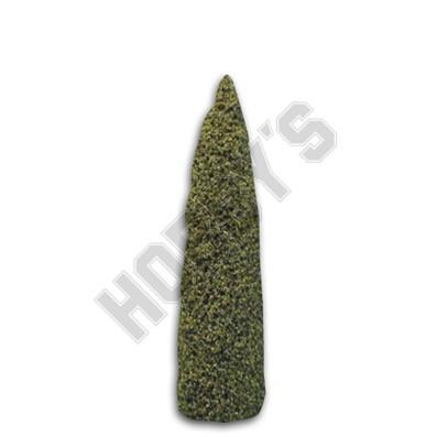 Topiary Cone Shrubs