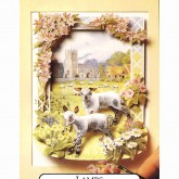 Lambs - 3D Picture Kit
