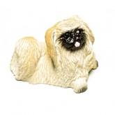 Dog - Pekinese