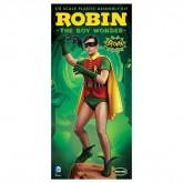 Robin: Burt Ward