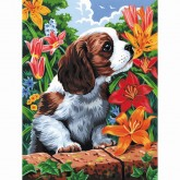 Painting By Numbers - Puppy