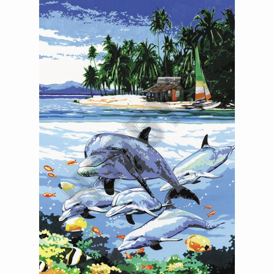 Painting By Numbers - Dolphin Encounter