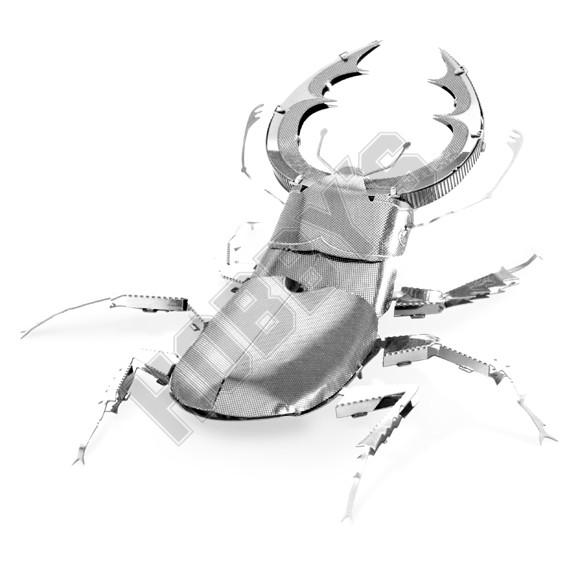 Stag Beetle Model