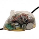 Line Tracking Mouse