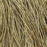 Field Grass - Natural Brown