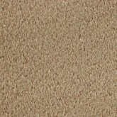 Bisque Beige Carpet