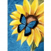 Butterfly & Sunflower