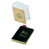 Holy Bible And Dictionary