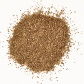 Earth Brown Scatter